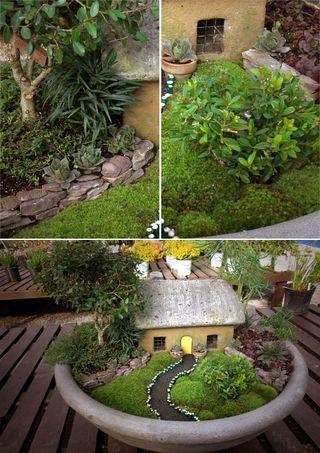 Mini jardin jap